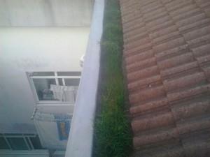 Edificio-Pan-Vieiro-(1)