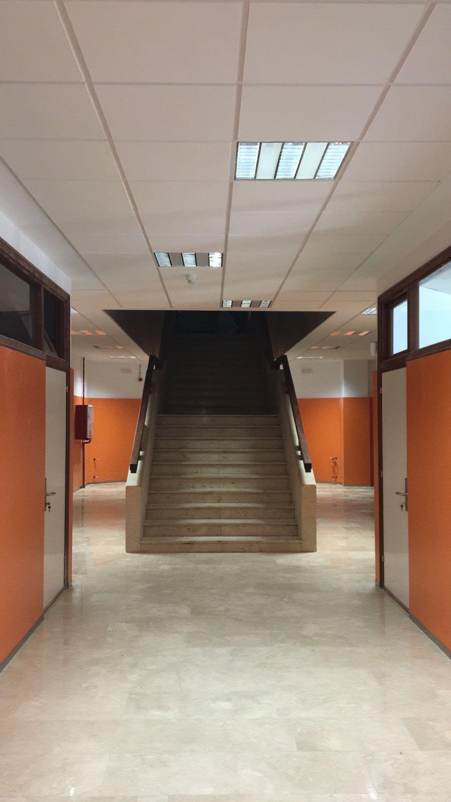 Falso Techo Centro Educativo